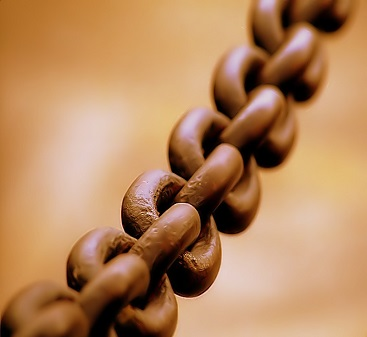 Broad_chain_closeup